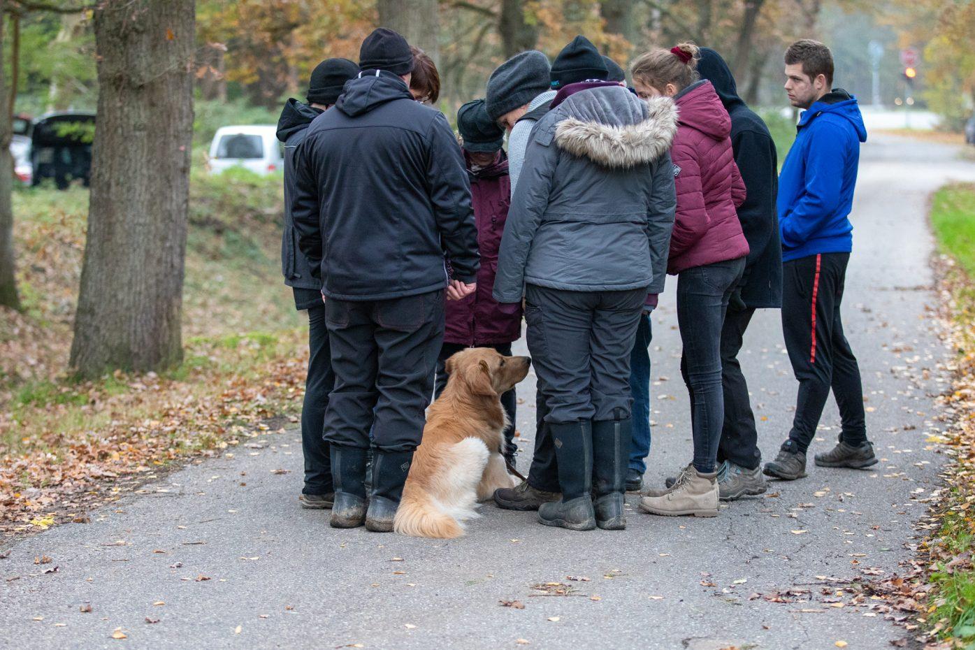 Leistungsprüfung Brüggen | 17.11.2019 1