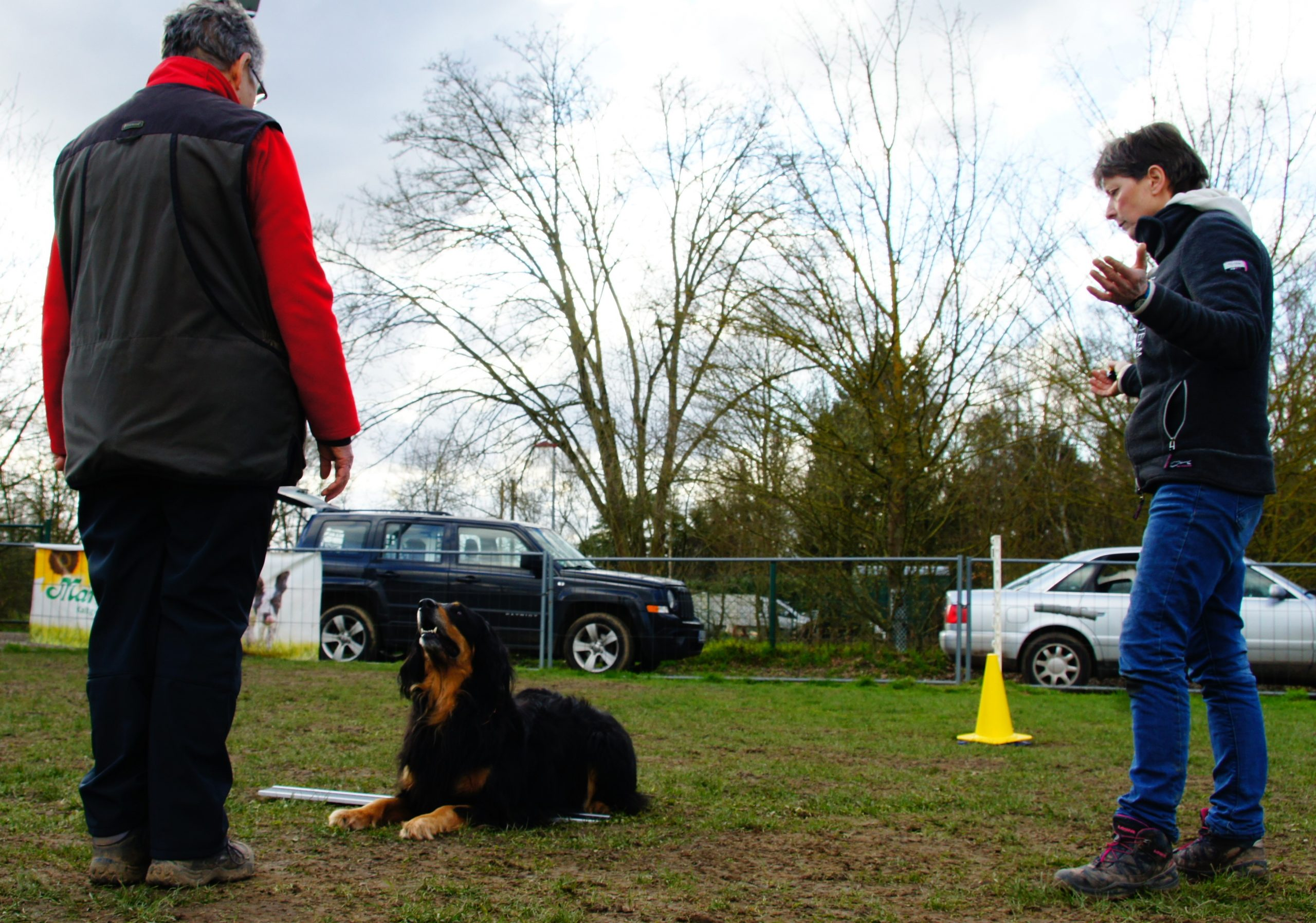 Obedience Seminar mit Brigitte Lange beim Team Mark 5