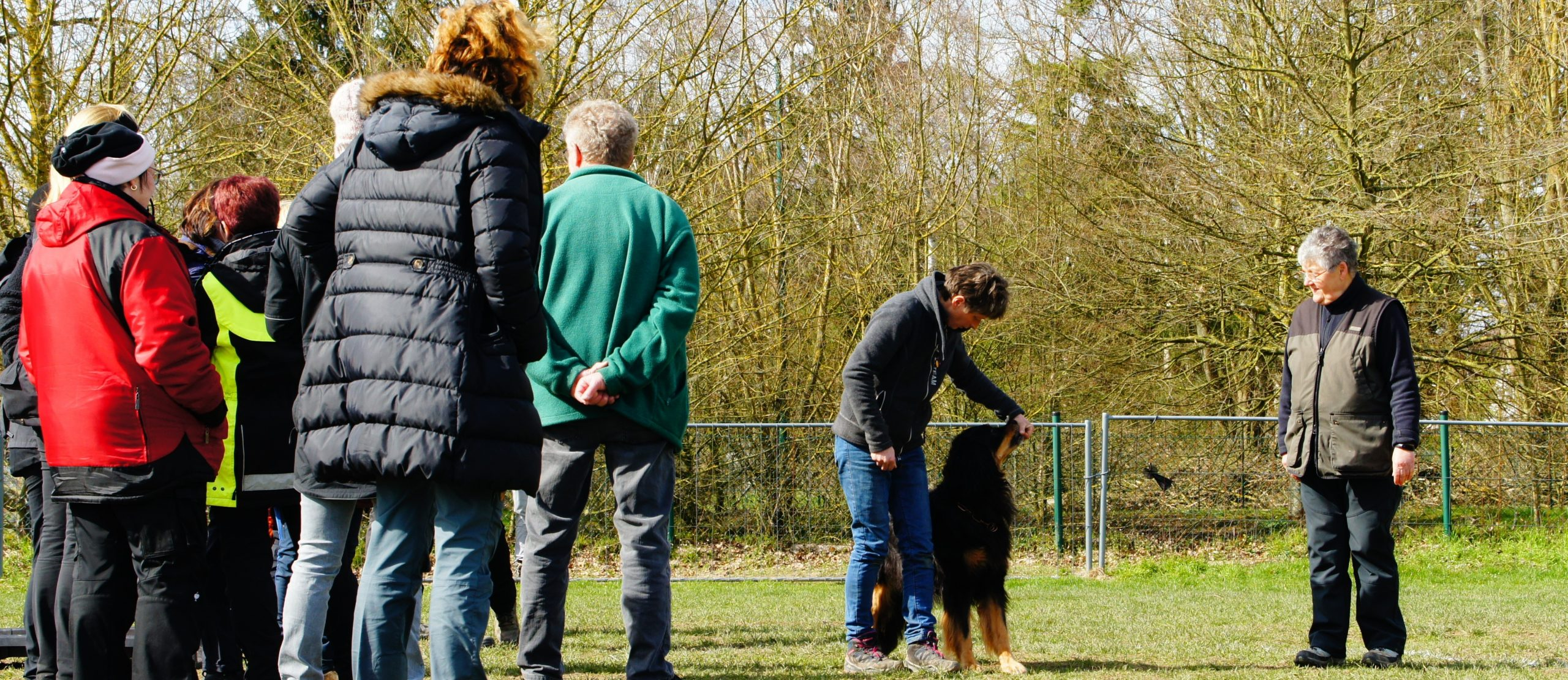 Obedience Seminar mit Brigitte Lange beim Team Mark 3