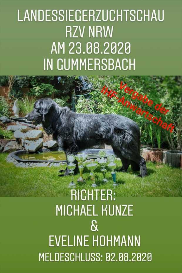 CAC Ausstellung in Gummersbach | 23.08.2020 1