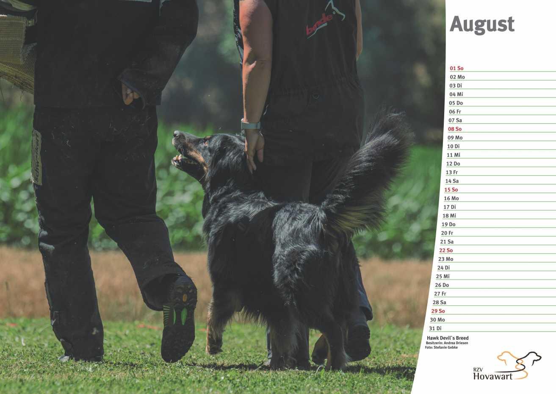 Hovawart Kalender 2021 9